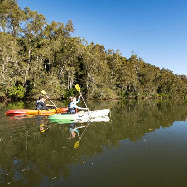 Coffs Harbour Attractions, Coffs Coast Kayaking